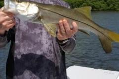 Boca-Grande-Inshore-Fishing-Charters