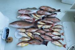 1_Placida-Fishing-Charters
