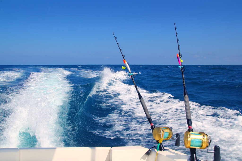 Everything You Need for a Successful Offshore Fishing Trip