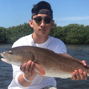 Boca Grande Inshore Fishing Charter
